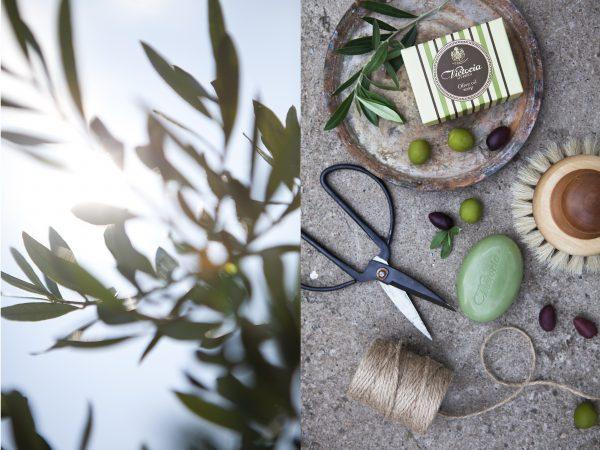 victoria-of-sweden-olive-oil-soap-3
